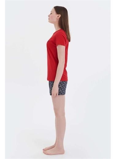 U.S. Polo Assn. U.S. Polo Assn. Kadın Kırmızı T-shirt Şort Takım Kırmızı